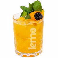 """Пюре фруктовое для чая, коктейлей """"Лимон-биттер"""" LEMO, 45 г (премикс, основа)"""